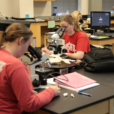 Ohio State Lima students doing hands-on learning with microscopes in Beth Gray's Biology class.